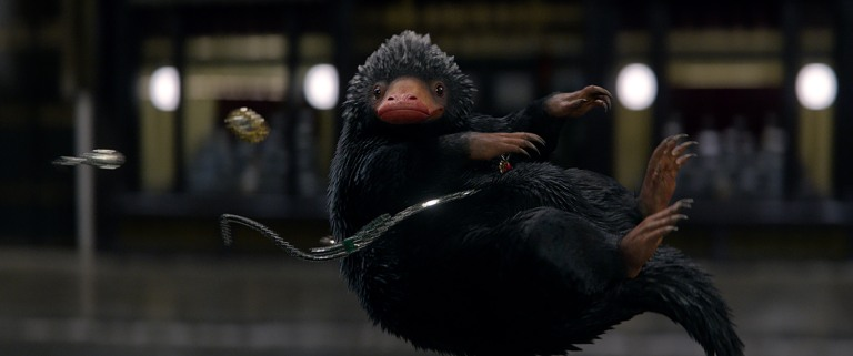 fantastic-beasts-and-where-to-find-them-niffler.jpg